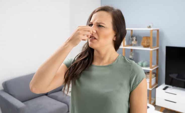 hoe vervelende geur uit mijn woning verwijderen